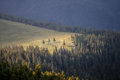Summer day in Carpathian mountains Royalty Free Stock Images