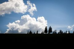 Summer day in Carpathian mountains Royalty Free Stock Image