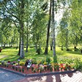 Summer day at the cemetery. A beautiful August day at Örnäskyrkogården in Lule Royalty Free Stock Photography