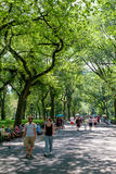 Summer day at  Central Park Mall in New York City Royalty Free Stock Photos