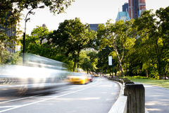 Summer day in Central Park, New York Stock Images