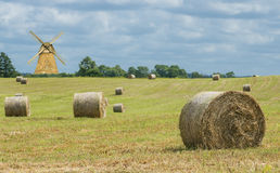 Summer day in ecologically clean region of Europe Stock Photography