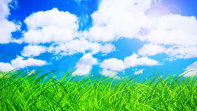 Summer day stock footage