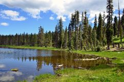 Summer Day At Gumboot Lake Stock Image