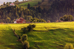Summer day on the hills. Summer day on the Carpathian hills Stock Image