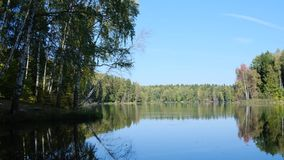 Summer day by the lake in the forest. Summer cloudless day by the lake in the forest stock footage