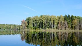 Summer day by the lake in the forest. Summer cloudless day by the lake in the forest stock video footage