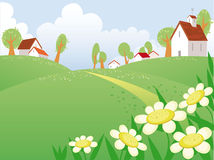 Summer day landscape. With chamomile and free space for your text Royalty Free Stock Photography