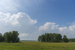Summer day landscape with field, forest and cloudy sky and sun. Stock Image