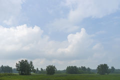 Summer day landscape with field, forest and cloudy sky and sun. Stock Photo