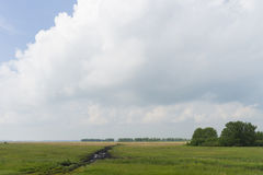 Summer day landscape with field, forest and cloudy sky and sun. Stock Photos