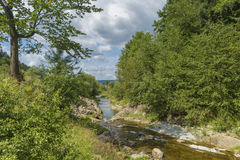 Summer day landscape with river, forest and cloudy sky Royalty Free Stock Photo