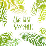 Summer day lettering poster with palm Stock Images