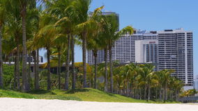Summer day miami downtown palm park hotel panorama 4k florida usa. Usa summer day miami downtown palm park hotel panorama 4k florida stock video footage