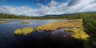 A summer day on a moorland lake Stock Photo