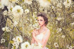 Summer day. Natural beauty and spa therapy. Springtime vacation. weather forecast. Summer girl at blooming tree. Woman. With spring fashion makeup. face and royalty free stock images
