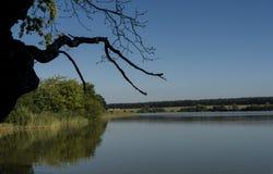 Summer day near south Bohemia ponds Stock Photos