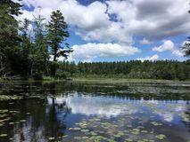 Laurall lake, New Hampshire, summer reflections. royalty free stock photography