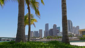 Summer day palm park miami downtown panorama view 4k florida usa stock video