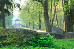 Summer day in the park. Landscape. With Chinese bridge Royalty Free Stock Photo