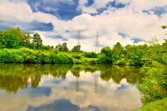 Summer day at the pond Stock Photography