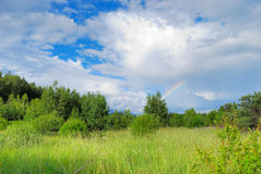 Summer day after rain. Part of rainbow among white clouds over green summer forest royalty free stock image