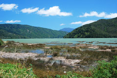 Summer day at Scenic Queen Charlotte sound Royalty Free Stock Image