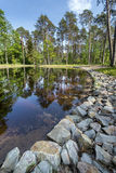 Summer day on small  lake in the forest Royalty Free Stock Photography