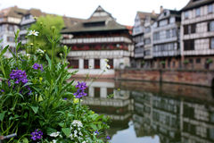 Summer day in Strasbourg. Royalty Free Stock Images