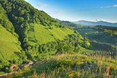 Summer Day in the village of Transylvania. Romania Royalty Free Stock Photography