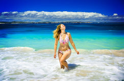 Summer Dayz royalty free stock photography