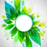 Summer decorative background with circle sticker Stock Image