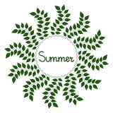 Summer decorative frame,  illustration. Summer decorative background,  illustration Royalty Free Stock Image