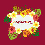 Summer Design with Copy space Stock Photography