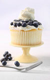Summer dessert with blueberries and whip cream Royalty Free Stock Photos