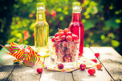 Summer dessert garden fruit gooseberry colorful drinks Stock Photography