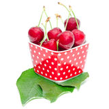 Summer dessert ripe cherry wet with drops berries Stock Image