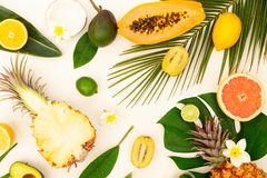 Summer diet, fresh fruits. Cuted fresh fruits with green tropical leves flat lay top view pattern, summer healthy diet background royalty free stock image