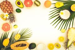 Summer diet, fresh fruits. Fresh fruits halves with green tropical leves flat lay frame, summer diet background, toned stock photography