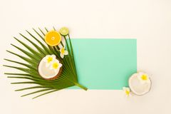 Summer diet, fresh fruits. Fresh fruits slices on fresh green tropical leaf flat lay scene, summer holiday background with copy space on blue paper note stock image