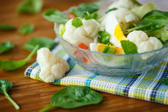 Summer diet salad with cauliflower Royalty Free Stock Photos