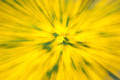 Summer Dizziness. Yellow Explousion. Royalty Free Stock Photo