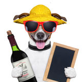 Summer dog and wine bottle Royalty Free Stock Photos