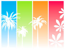 Summer dream Stock Image