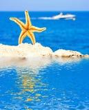 Summer dream Royalty Free Stock Image