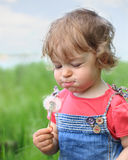 Summer dreams. Beautiful child blows on dandelion in the summer. Shallow depth of field stock photography