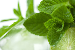 Summer drink. A refreshing summer drink: mint, lime, ice, soda water Stock Image