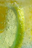 Summer Drink. Lemon and orange in bubbling gin and tonic drink stock images