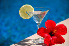 Free Summer Drink Stock Photography - 8969942