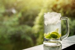 Summer Drink Concept, Glass of Caipirinha or Tropical Lemon Juic. E on Balcony. Natural Sunlight and Tree as background. Side View Royalty Free Stock Photo